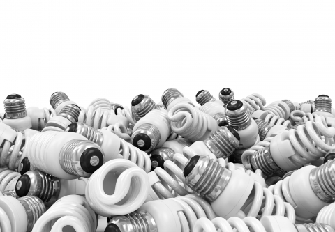 Pile of compact fluorescent lightbulbs. Photo credit: Rashevskyi Viacheslav / Shutterstock